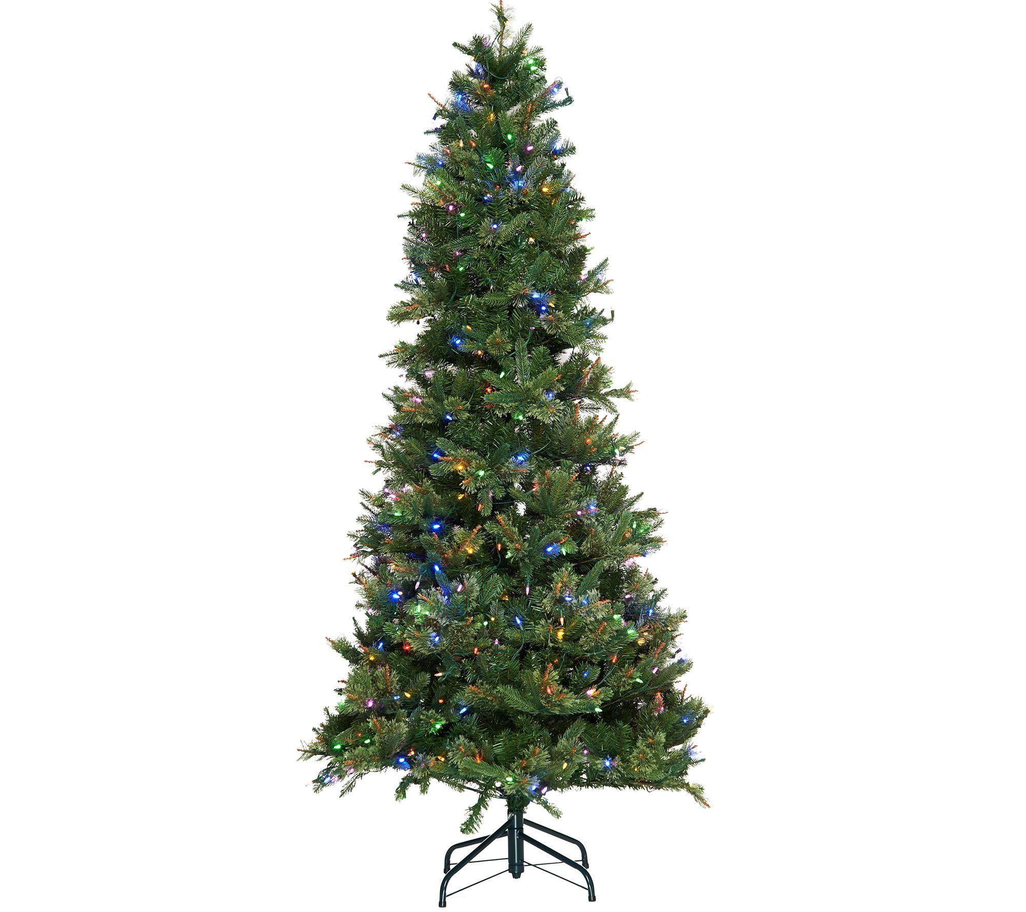 Christmas Trees Bristol: ED On Air Santa'sBest 7.5 Bristol Pine Mix Tree By Ellen