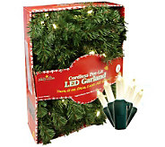 Batt. Operated 9 Fir Garland w/35 Micro-Mini Warm White LEDs - H363142