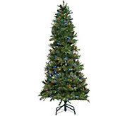 ED On Air Santas Best 9 Bristol Pine Mix Tree by Ellen DeGeneres - H209443