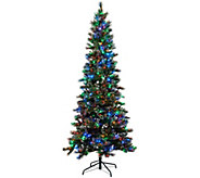 Kringle Express 9 Glittery Pine Tree w/ LED Color Changing Lights - H205744