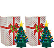 Mr. Christmas Set of 2 7 Miniature Nostalgic Tabletop Trees - H208545