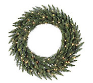 36 Camdon Fir Wreath by Vickerman - H155148