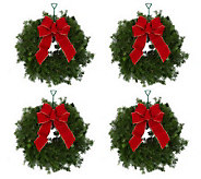 Set of 4 Mini Fresh Balsam Wreaths by Valerie - H200948