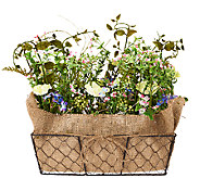 Forget-Me-Not and Violet Floral Basket by Valerie - H204848