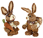 Set of 2 Brother and Sister Bunnies by Valerie - H204849