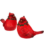 Kringle Express Set of 2 Illuminated Christmas Birds - H205849
