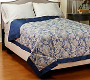 Northern Nights Jacqueline400TC All Seasons QN Reversible Down Blanket - H206949