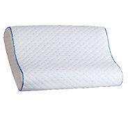 Sealy Memory Foam Contour Pillow - H283149