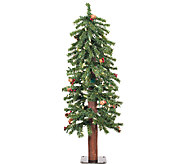 2 Prelit Frosted Alpine Berry Tree by Vickerman - H286649