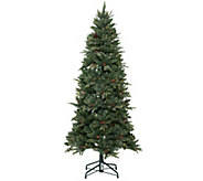 Bethlehem Lights 5 Preston Fir Christmas Tree w/Instant Power - H203350