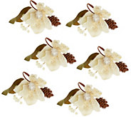 S/6 Glittered Magnolia, Pinecone, & Berry Napkin Rings - H206650