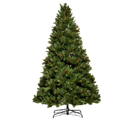 Lights 65 Trevor Pine Christmas Tree wInstant Power     QVCcom guHma6I9