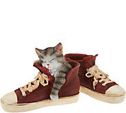 Indoor/Outdoor Sleeping Puppy or Kitten in Sneaker by Valerie - H210551