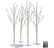 Kringle Express Set of 4 Lit 3 Birch or Natural Tree Branch Stakes - H211551