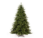 7-1/2 Camdon Fir Tree by Vickerman - H155152