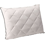 Comfort Evolution Down & Memory Foam Customized Sleep Pillow - H205454