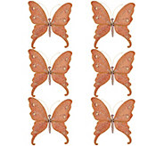 Set of 6 Butterfly Clips by Valerie - H208854