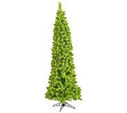 6-1/2 Flocked Pine Tree by Vickerman - H280555