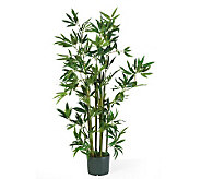 4 Bamboo Plant by Nearly Natural - H179256
