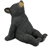 Design Toscano Catching Rays Bear Cub Statue - H286256