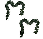 Bethlehem Lights Set of 2 Battery Op. 9 Garlands - H203557