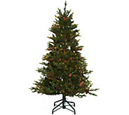 Bethlehem Lights 5 Heritage Spruce Christmas Tree w/Instant Power - H208557
