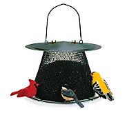 No/No Original 2.5 lb Bird Feeder in Forest Green - H349757