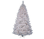 5.5 White Sparkle Spruce Tree with LED - H364657