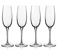 Luigi Bormioli 8-oz Champagne Glasses - Set of4 - H172558