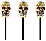 Battery Operated S/3 Skull Light & Sound Haunted Path Markers - H363158