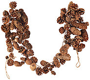 ED On Air Natural Rustic 5 Pinecone Garland by Ellen DeGeneres - H206259