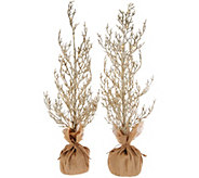 As Is Set of 2 32 Glitter Trees w/ Burlap Bases by Valerie - H210959