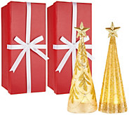 Kringle Express Set of 2 Lit Glass Shimmer & Sparkle Trees w/Gift Boxes - H211559