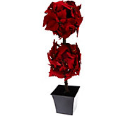 As Is Bethlehem Lights 30 Poinsettia Topiary Tree - H211659