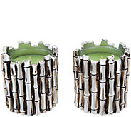 HomeWorx by Harry Slatkin S/2 Silvered Bamboo Candles - H213659