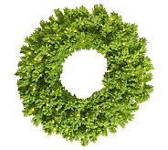24 Colored Slim Pine Wreath by Vickerman - H280559