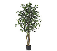 4 Ficus Tree by Nearly Natural - H179260
