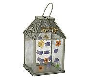 Copa Judaica Wild Flowers Tzedakah Box - H144861