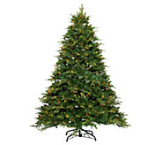 Bethlehem Lights Prelit 6.5 Shenandoah Pine Full Christmas Tree - H213361