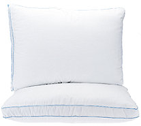 PedicSolutions Set of 2 Supreme Memory Loft Standard Pillows - H204962