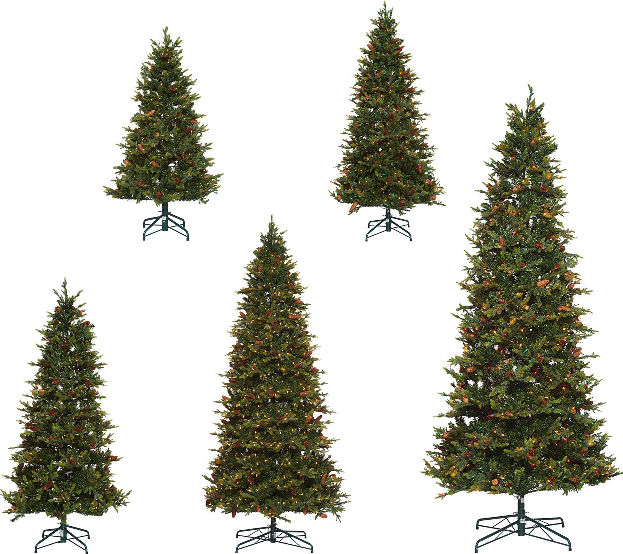 Bethlehem Lights Heritage Spruce Christmas Tree W/Instant