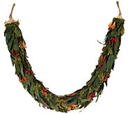 ED On Air Magnolia and Berry Preserved Garland by Ellen DeGeneres - H209663