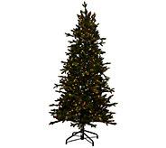 As Is Bethlehem Lights 15th Anniversary 5 Christmas Tree - H207264