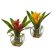 Set of 2 Bromeliads with Vase Arrangements by Nearly Natural - H295664