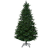 Santas Best 7.5 Balsam Fir Tree with RGB  Function - H207065