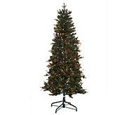 As Is Bethlehem Lights 5 Lakewood Fir Christmas Tree - H208165