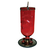 Hummingbird Antique-Style Bottle Feeder - Red Glass - H177566