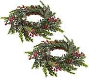 As Is Set of 2 Iced Hemlock Candle Rings with Berries by Valerie - H210266