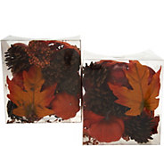 Set of 2 Pumpkin, Leaf and Pinecone Filler in Boxes by Valerie - H211566
