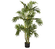 4 Areca Palm Tree by Nearly Natural - H357366